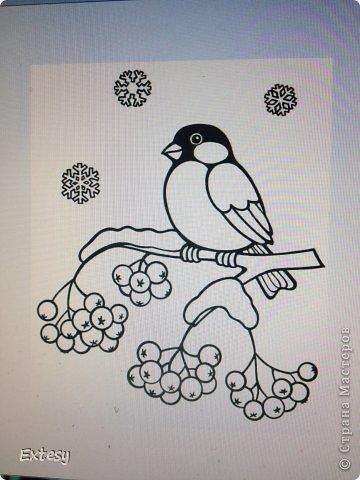 Раскраски снегири - 2