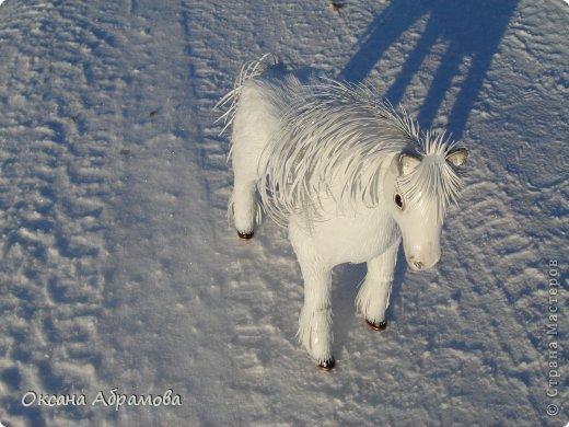 """Приветствую Вас мои дорогие гости, мастера и мастерицы, удивительной страны ! Приятно познакомиться - я лошадь породы """"Першерон"""". фото 4"""
