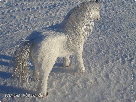 """Приветствую Вас мои дорогие гости, мастера и мастерицы, удивительной страны ! Приятно познакомиться - я лошадь породы """"Першерон"""". фото 3"""