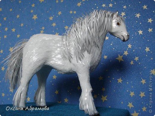 """Приветствую Вас мои дорогие гости, мастера и мастерицы, удивительной страны ! Приятно познакомиться - я лошадь породы """"Першерон"""". фото 1"""