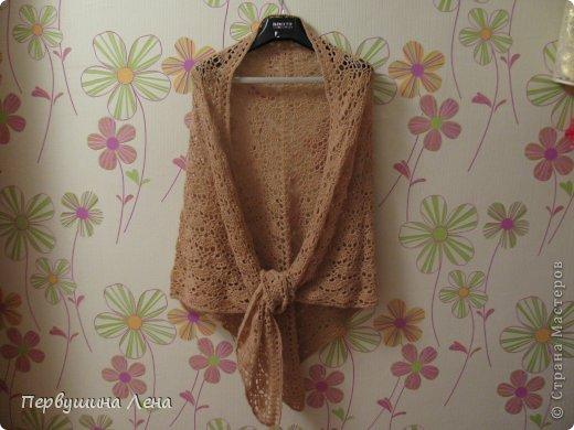 Вязание спицами 19 шалей и
