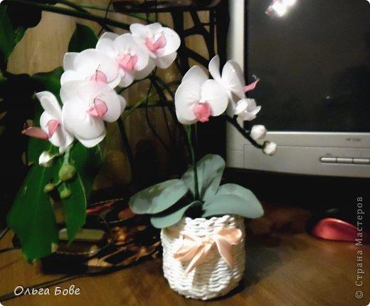 Орхидея своими руками поделка