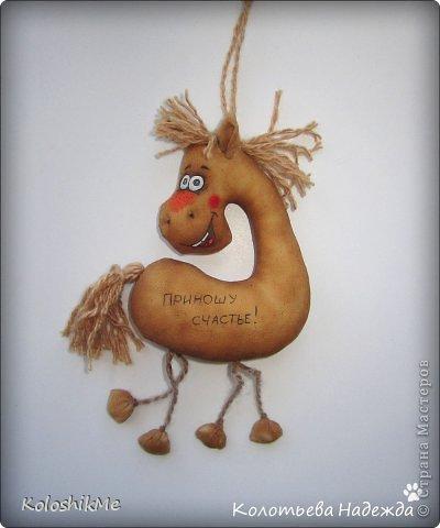 Привет всем!!! Чем ближе Новый год, тем всё больше рождается лошадок позитивных! В результате накопилось немало их фотографий, которые хочу представить Вашему вниманию! фото 7
