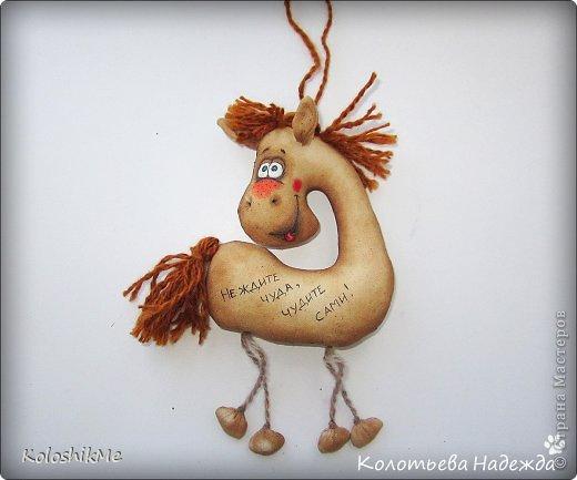 Привет всем!!! Чем ближе Новый год, тем всё больше рождается лошадок позитивных! В результате накопилось немало их фотографий, которые хочу представить Вашему вниманию! фото 10