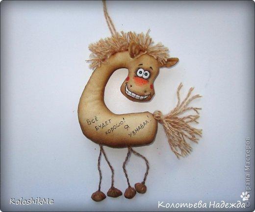 Привет всем!!! Чем ближе Новый год, тем всё больше рождается лошадок позитивных! В результате накопилось немало их фотографий, которые хочу представить Вашему вниманию! фото 11