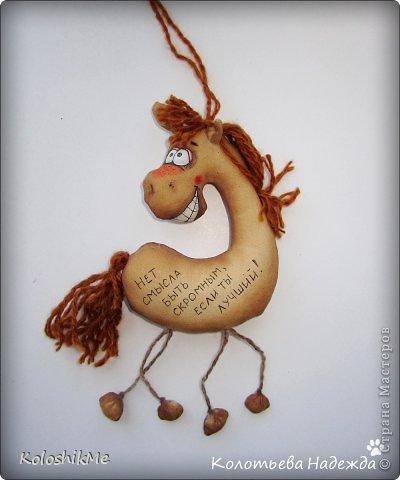 Привет всем!!! Чем ближе Новый год, тем всё больше рождается лошадок позитивных! В результате накопилось немало их фотографий, которые хочу представить Вашему вниманию! фото 17