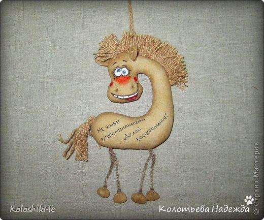 Привет всем!!! Чем ближе Новый год, тем всё больше рождается лошадок позитивных! В результате накопилось немало их фотографий, которые хочу представить Вашему вниманию! фото 24