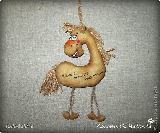 Привет всем!!! Чем ближе Новый год, тем всё больше рождается лошадок позитивных! В результате накопилось немало их фотографий, которые хочу представить Вашему вниманию! фото 28