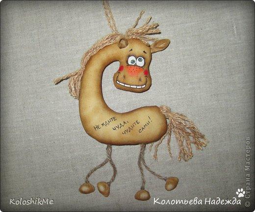 Привет всем!!! Чем ближе Новый год, тем всё больше рождается лошадок позитивных! В результате накопилось немало их фотографий, которые хочу представить Вашему вниманию! фото 30