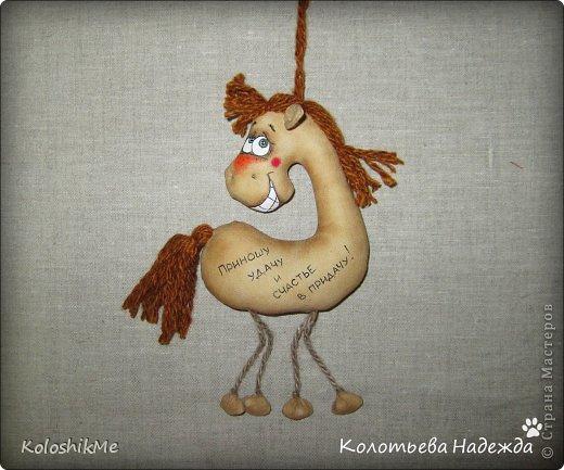 Привет всем!!! Чем ближе Новый год, тем всё больше рождается лошадок позитивных! В результате накопилось немало их фотографий, которые хочу представить Вашему вниманию! фото 25