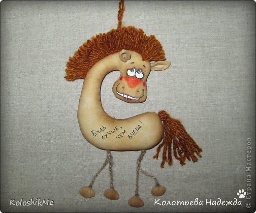 Привет всем!!! Чем ближе Новый год, тем всё больше рождается лошадок позитивных! В результате накопилось немало их фотографий, которые хочу представить Вашему вниманию! фото 29