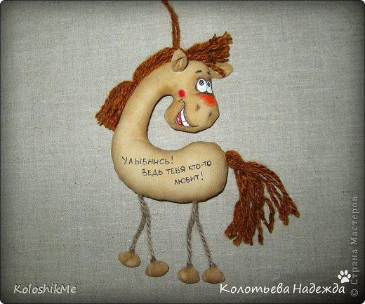 Привет всем!!! Чем ближе Новый год, тем всё больше рождается лошадок позитивных! В результате накопилось немало их фотографий, которые хочу представить Вашему вниманию! фото 33