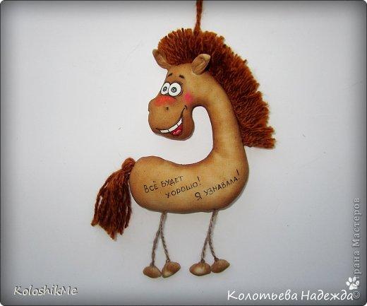 Привет всем!!! Чем ближе Новый год, тем всё больше рождается лошадок позитивных! В результате накопилось немало их фотографий, которые хочу представить Вашему вниманию! фото 40