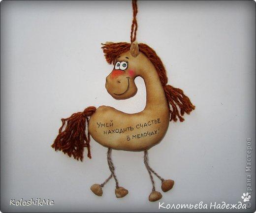 Привет всем!!! Чем ближе Новый год, тем всё больше рождается лошадок позитивных! В результате накопилось немало их фотографий, которые хочу представить Вашему вниманию! фото 42