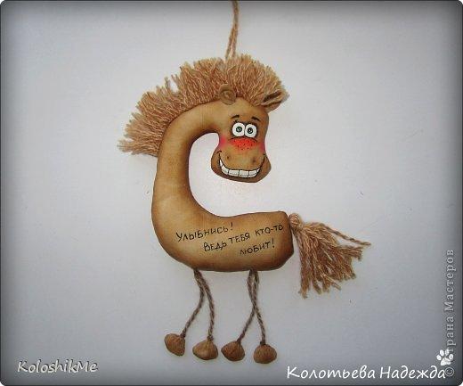 Привет всем!!! Чем ближе Новый год, тем всё больше рождается лошадок позитивных! В результате накопилось немало их фотографий, которые хочу представить Вашему вниманию! фото 43
