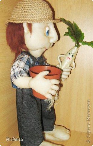 Садовник фото 2