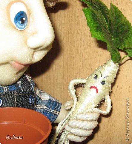 Садовник фото 3