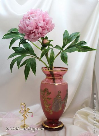 Пион-король цветов фото 4