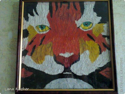 Декілька робіт із макарону тигрик 30 х 30 фото 1