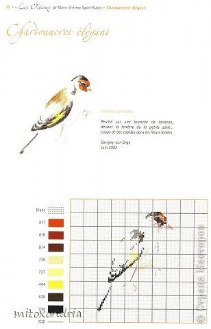 Вышила крестом птичек из книги  французской художницы Marie-Therese Saint-Aubin фото 6