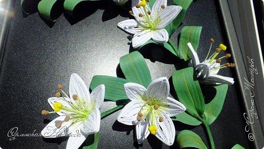 Сделала в подарок очень хорошей женщине, она очень любит эти замечательные цветы!  фото 10