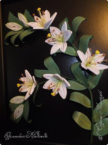 Сделала в подарок очень хорошей женщине, она очень любит эти замечательные цветы!  фото 11