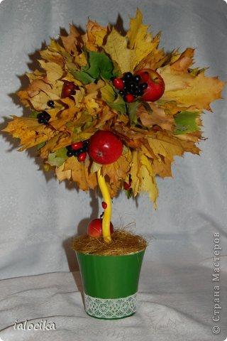 Доброго всем дня,вот решила выставить поделки в детсад на праздник Осени,немного не по сезону,но согревает душу.Выполнено из листьев клёна,настоящих яблочек и ягод шиповника. фото 1