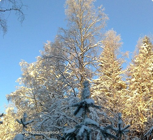 Солнечная погода. фото 11