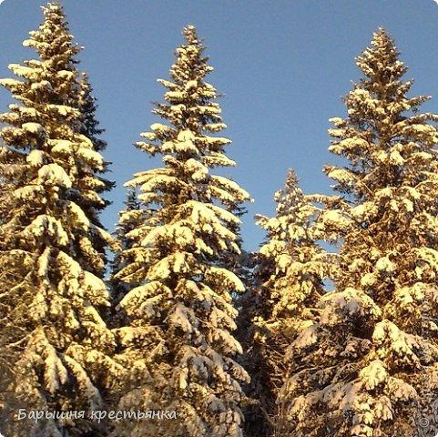 Солнечная погода. фото 8