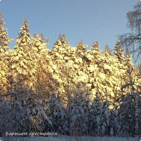 Солнечная погода. фото 15