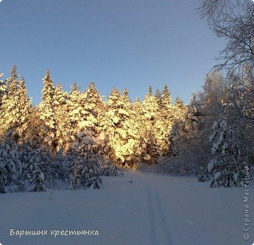 Солнечная погода. фото 7