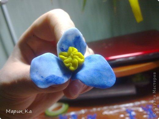 Конечный результат на живом цветке!  фото 19