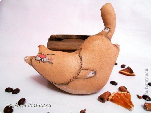 Кот-рыбачок фото 2