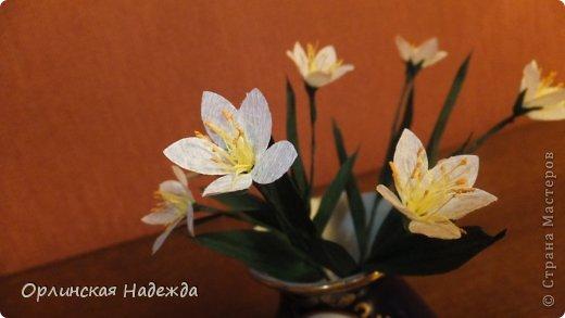 Добрый день любимая Страна! Сегодня я к Вам с повторюшками цветочков. Цветы увидела у замечательной мастерицы Татьяны ( Сапфир )  https://stranamasterov.ru/node/452732, очень понравились, попробовала тоже сделать, но у меня нет кристальной бумаги, поэтому я сделала из простой гофрированной. Татьяна, огромное Вам спасибо за Ваше творчество.  Уезжала надолго в гости к внукам, а когда вернулась, всё никак не могла настроится на творческую волну и решила пока попробовать свои силы вот в таких маленьких пробных цветочках.   Цветы нам дарят настроенье, И пробуждают вдохновенье, Как символ чистой красоты, Ведь очень трудно без мечты!  И остаётся прочно с нами, Всё то, что связано с цветами, В них растворились краски звёзд, И мир любви без мук и слёз!   Стихи Марка Львовского фото 4