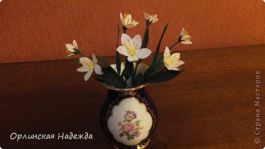 Добрый день любимая Страна! Сегодня я к Вам с повторюшками цветочков. Цветы увидела у замечательной мастерицы Татьяны ( Сапфир )  https://stranamasterov.ru/node/452732, очень понравились, попробовала тоже сделать, но у меня нет кристальной бумаги, поэтому я сделала из простой гофрированной. Татьяна, огромное Вам спасибо за Ваше творчество.  Уезжала надолго в гости к внукам, а когда вернулась, всё никак не могла настроится на творческую волну и решила пока попробовать свои силы вот в таких маленьких пробных цветочках.   Цветы нам дарят настроенье, И пробуждают вдохновенье, Как символ чистой красоты, Ведь очень трудно без мечты!  И остаётся прочно с нами, Всё то, что связано с цветами, В них растворились краски звёзд, И мир любви без мук и слёз!   Стихи Марка Львовского фото 5