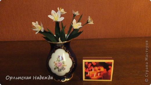 Добрый день любимая Страна! Сегодня я к Вам с повторюшками цветочков. Цветы увидела у замечательной мастерицы Татьяны ( Сапфир )  https://stranamasterov.ru/node/452732, очень понравились, попробовала тоже сделать, но у меня нет кристальной бумаги, поэтому я сделала из простой гофрированной. Татьяна, огромное Вам спасибо за Ваше творчество.  Уезжала надолго в гости к внукам, а когда вернулась, всё никак не могла настроится на творческую волну и решила пока попробовать свои силы вот в таких маленьких пробных цветочках.   Цветы нам дарят настроенье, И пробуждают вдохновенье, Как символ чистой красоты, Ведь очень трудно без мечты!  И остаётся прочно с нами, Всё то, что связано с цветами, В них растворились краски звёзд, И мир любви без мук и слёз!   Стихи Марка Львовского фото 6