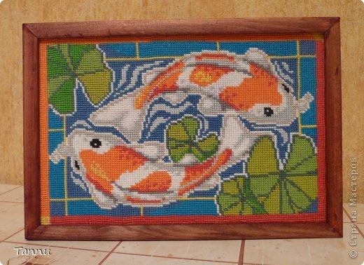 """Вышила таких рыбок, схему в ИНтернете нашла-написано, """"Карпы Кои""""))) фото 3"""