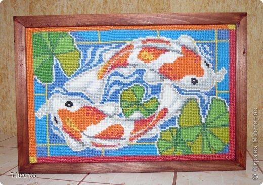 """Вышила таких рыбок, схему в ИНтернете нашла-написано, """"Карпы Кои""""))) фото 2"""