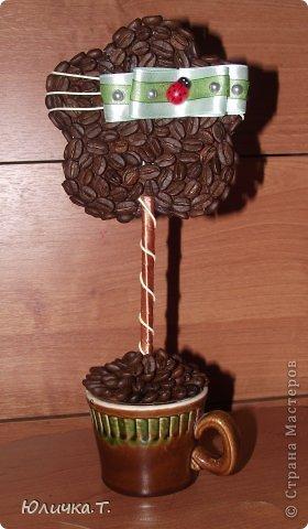 Здравствуйте, дорогие Мастерицы!!!! Теперь не могу оторваться от кофе! Сделала вот такие маленькие топиарии-цветочки! Идея не моя, но мне очень  нравится! фото 2