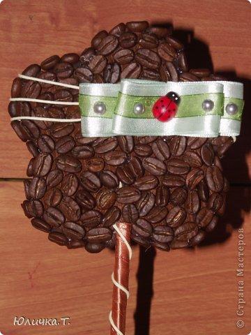 Здравствуйте, дорогие Мастерицы!!!! Теперь не могу оторваться от кофе! Сделала вот такие маленькие топиарии-цветочки! Идея не моя, но мне очень  нравится! фото 3