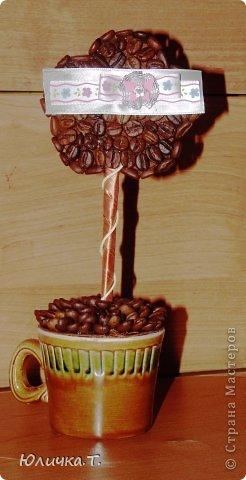 Здравствуйте, дорогие Мастерицы!!!! Теперь не могу оторваться от кофе! Сделала вот такие маленькие топиарии-цветочки! Идея не моя, но мне очень  нравится! фото 6