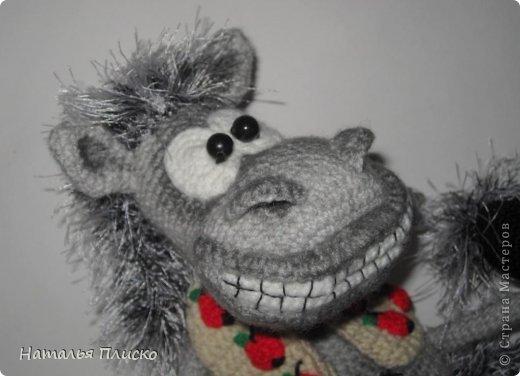 Всем привет!!! На днях у моего мужа, а если быть точной - в Старый Новый год, был день рожденья))))) А так как он родился в год Лошади, вопрос с подарком для меня был решён уже давно, как только я увидела этого Коня от Алоны Рабинович (http://www.liveinternet.ru/users/4938422/post293241034/)))))) Спасибо ей большое за позитив и лёгкое вязание))))))  фото 2