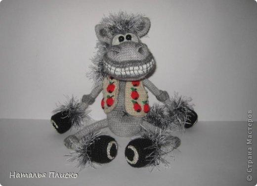 Всем привет!!! На днях у моего мужа, а если быть точной - в Старый Новый год, был день рожденья))))) А так как он родился в год Лошади, вопрос с подарком для меня был решён уже давно, как только я увидела этого Коня от Алоны Рабинович (http://www.liveinternet.ru/users/4938422/post293241034/)))))) Спасибо ей большое за позитив и лёгкое вязание))))))  фото 4
