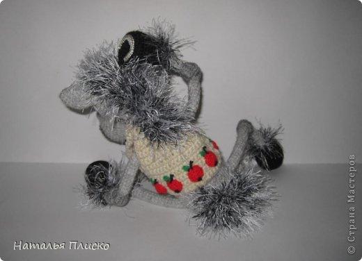 Всем привет!!! На днях у моего мужа, а если быть точной - в Старый Новый год, был день рожденья))))) А так как он родился в год Лошади, вопрос с подарком для меня был решён уже давно, как только я увидела этого Коня от Алоны Рабинович (http://www.liveinternet.ru/users/4938422/post293241034/)))))) Спасибо ей большое за позитив и лёгкое вязание))))))  фото 7