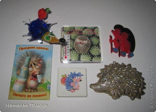 Всем привет!!! На днях у моего мужа, а если быть точной - в Старый Новый год, был день рожденья))))) А так как он родился в год Лошади, вопрос с подарком для меня был решён уже давно, как только я увидела этого Коня от Алоны Рабинович (http://www.liveinternet.ru/users/4938422/post293241034/)))))) Спасибо ей большое за позитив и лёгкое вязание))))))  фото 20