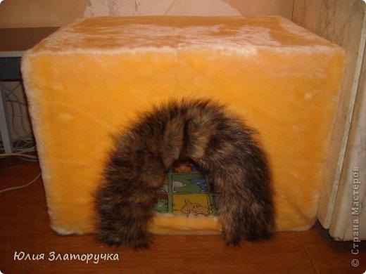Захотелось мне для своего котейки домик сделать.А т.к.я с молотком на Вы -решила сделать его из пеноплекса)легко и тепло)) фото 1