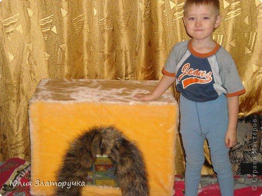 Захотелось мне для своего котейки домик сделать.А т.к.я с молотком на Вы -решила сделать его из пеноплекса)легко и тепло)) фото 5