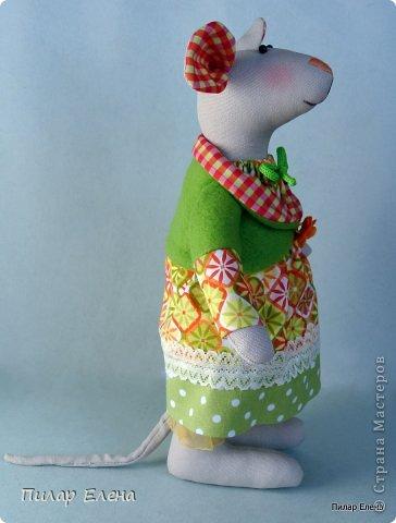 Славная парочка - мышка Маришка и заяц Егорка. фото 8