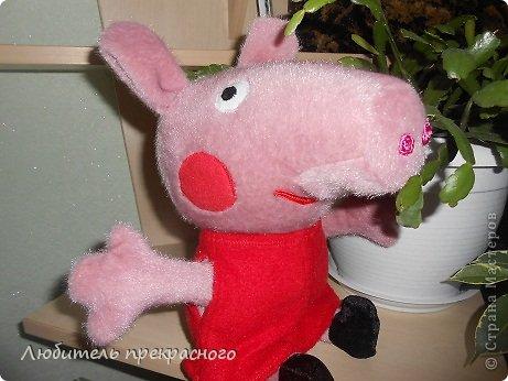 Игрушка Мастер-класс Шитьё Мультяшные свинка Пеппа и Джордж Тесьма шнур Ткань фото 32