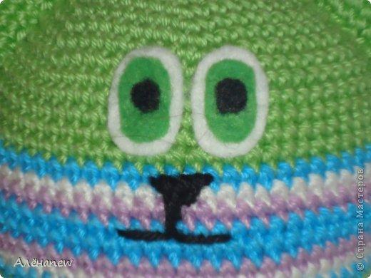 зелёнокот фото 4
